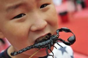China food festival